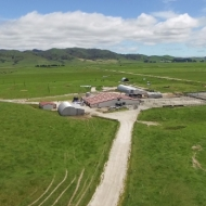 Farm_aerial view